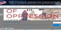 uyghuramerican.