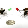 Robotic Insects Make First Controlled Flight